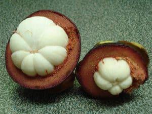 wnętrze owoców mangostan