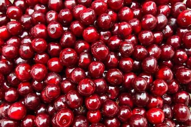 owoce wiśni