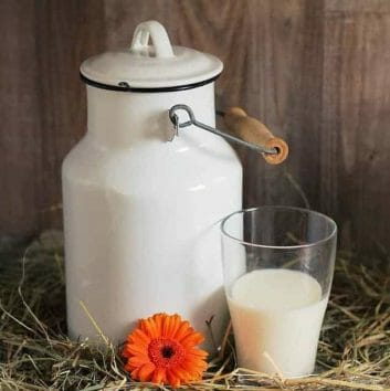 kanka i szklanka z mlekiem